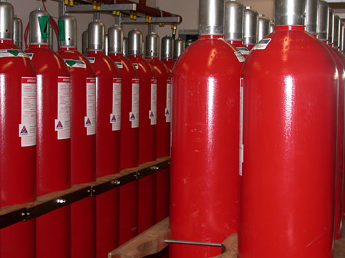 Records are protected using a halon/aragonite fire suppression system.
